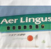 Aer Lingus T Shirt Original Art Ireland WHITE Airlines T Shirt Aviation T Shirt Original Art Ireland T Shirt