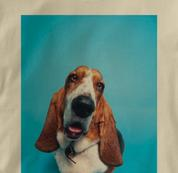 Basset Hound T Shirt Portrait TAN Dog T Shirt Portrait T Shirt