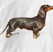 Dachshund T Shirt Vintage Portrait WHITE Dog T Shirt Vintage Portrait T Shirt