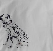 Dalmatian T Shirt Portrait Sitting GRAY Dog T Shirt Portrait Sitting T Shirt