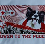 Border Collie T Shirt Power to the Pooch BLUE Dog T Shirt Power to the Pooch T Shirt