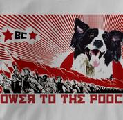 Border Collie T Shirt Power to the Pooch GRAY Dog T Shirt Power to the Pooch T Shirt