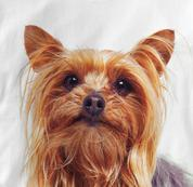 Yorkie T Shirt Portrait Yorkshire Terrier WHITE Dog T Shirt Portrait Yorkshire Terrier T Shirt
