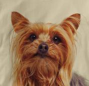 Yorkie T Shirt Portrait Yorkshire Terrier TAN Dog T Shirt Portrait Yorkshire Terrier T Shirt